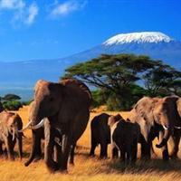 肯尼亚 景点列表