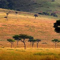 刚果 景点列表