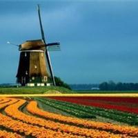 荷兰 景点列表