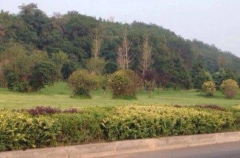 甘井子公园 景点详情