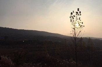 嵩北森林公园 景点图片