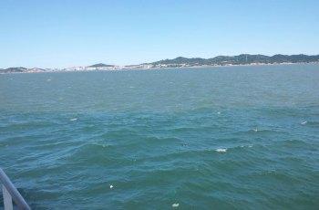 长岛黄渤海分界线 景点详情