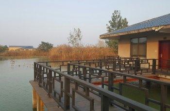 洪泽湖湿地公园 景点图片