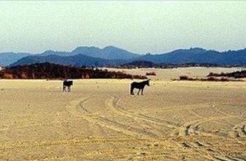 江南大漠 景点详情
