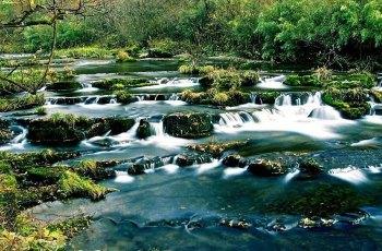 黎平国家森林公园 景点图片