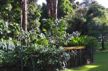 凯恩斯植物园 景点详情