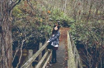 登别原始林 景点图片
