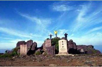 张忡摩崖 景点详情
