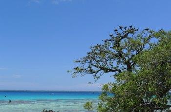 帕皮提岛 景点图片