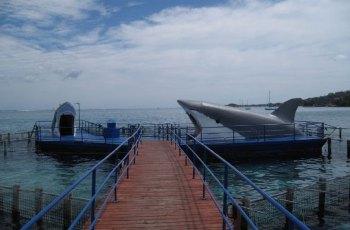 Lagoonarium de Tahiti 景点详情