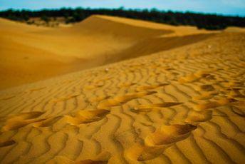 红沙丘 景点图片