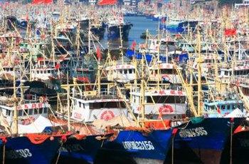台州东巴黎渔家乐 景点图片