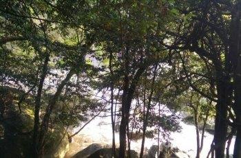 福寿山森林公园 景点详情