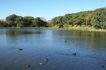 自然湿地保护区 景点图片