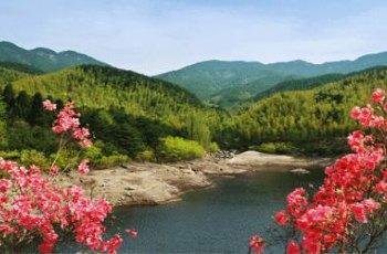 黄柏山国家森林公园 景点详情