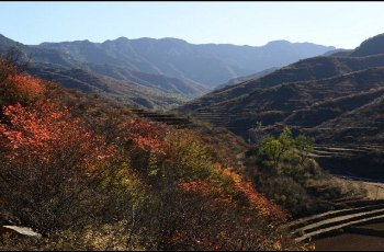 紫云山景区 景点图片