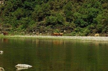 山里泉 景点图片