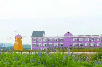 紫海薰衣草庄园 景点详情