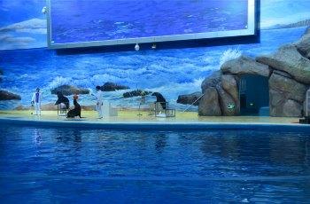 罗源湾海洋世界 景点详情