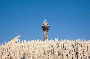 Puijo tower 景点图片