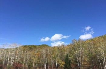 寒葱岭枫叶红色旅游观光休闲区  景点图片
