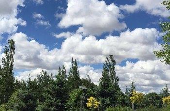 呼和浩特市植物园 景点详情