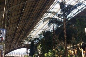 Atocha Railroad Station (Estacion Atocha) 景点详情