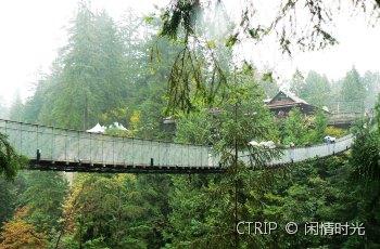 卡皮拉诺吊桥 景点图片