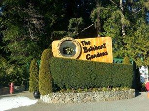 布查特花园 景点图片