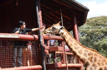 长颈鹿中心 景点图片
