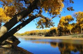 黑河流域自然保护区 景点详情