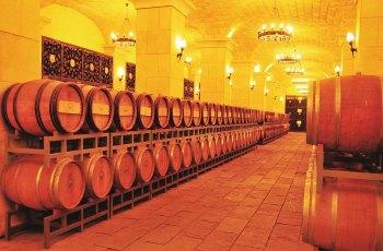 张裕爱斐堡国际酒庄 景点图片