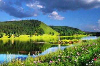红花尔基森林公园 景点详情