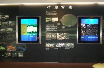 中国菇菌博物馆 景点图片