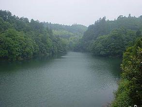 株树桥水库(浏阳湖) 景点详情