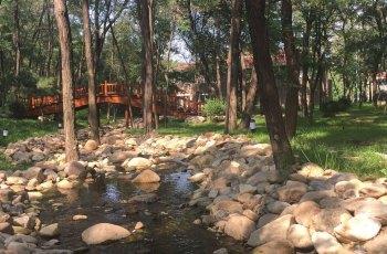 仙人岛国家森林公园 景点图片