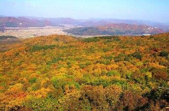 松峰山自然保护区 景点详情