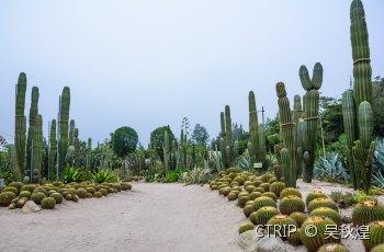 厦门园林植物园 景点详情