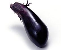 茄子(紫皮、长)