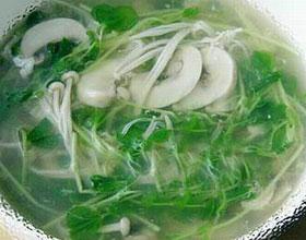 豆苗蘑菇汤