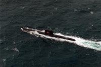 大青花鱼级潜艇
